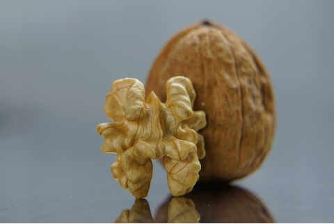 Химический состав грецкого ореха