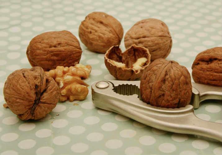 Польза и вред грецких орехов и перегородок для организма
