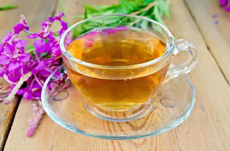 Иван чай полезные свойства для мужчин
