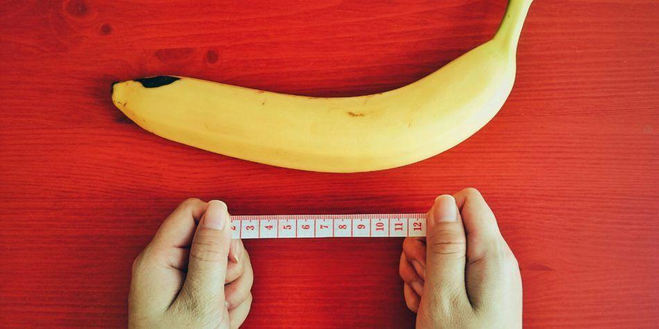 8 удивительных фактов о пенисе, которые вы не знали о своем
